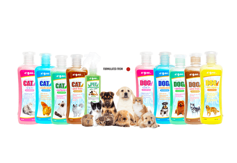 Cats & Dogs Shampoo